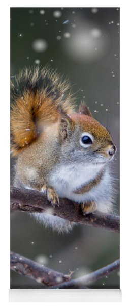 Yoga Mat featuring the photograph Squirrel Balancing Act by Patti Deters