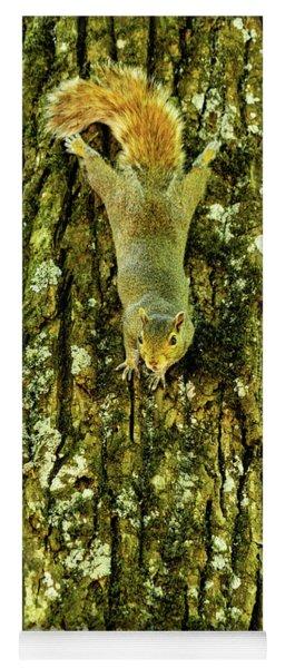 Squirrel Bark Georgia Mountains Yoga Mat