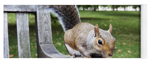 Squirrel Bench Yoga Mat