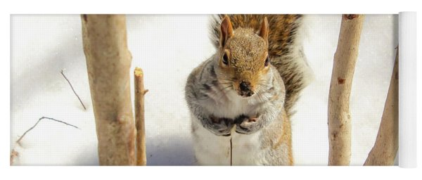 Squirrel In Snow Yoga Mat