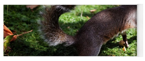 Squirrel Running Yoga Mat