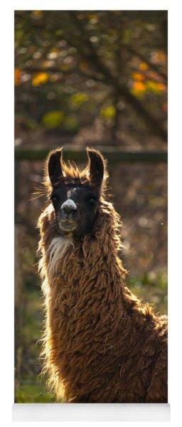 Staring Llama Yoga Mat
