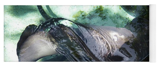 Yoga Mat featuring the photograph Stingray Wave by Francesca Mackenney