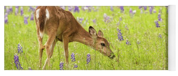 Stop And Smell The Bluebonnets. Yoga Mat