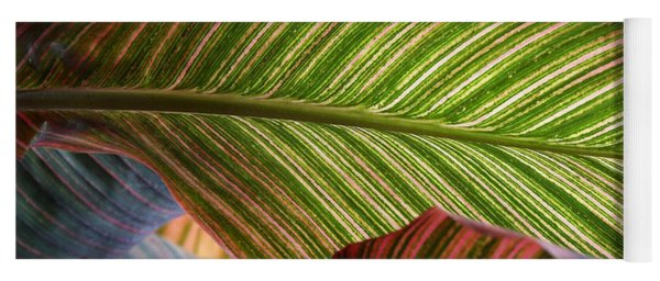 Striped Canna Lily Leaves Yoga Mat