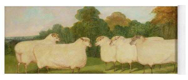 Study Of Sheep In A Landscape   Yoga Mat