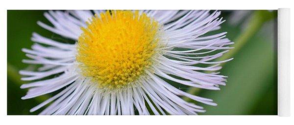 Summer Flower Yoga Mat