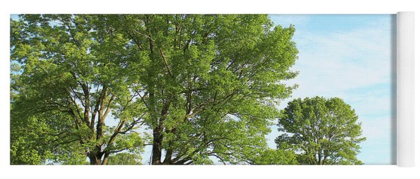 Summer Trees Yoga Mat