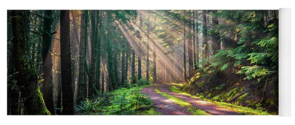 Sunbeams In Trees Yoga Mat