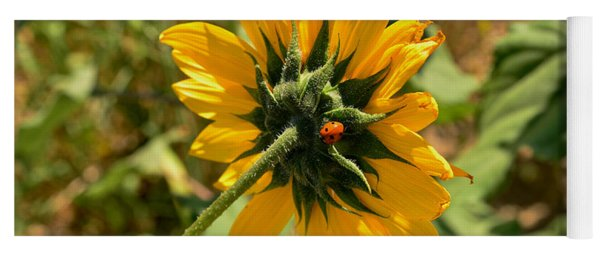 Sunflower 182 With Lady Bug Yoga Mat