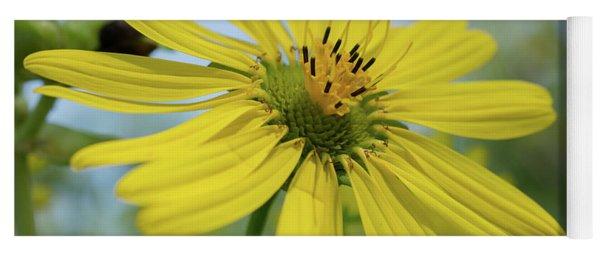 Sunflower Close-up Yoga Mat