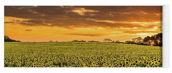 Sunflower Fields Sunset Yoga Mat