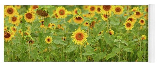 Sunflower Patch Yoga Mat