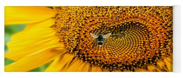Sunflower Patch Yoga Mat