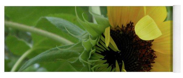 Sunflower Rising Yoga Mat