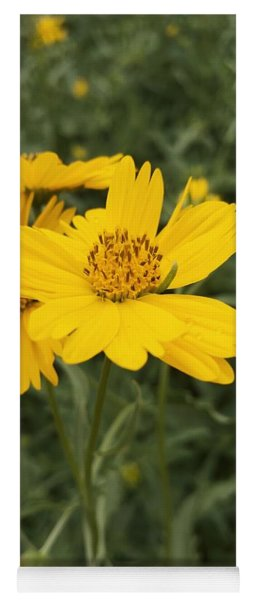 Sunflower Sanctuary  Yoga Mat