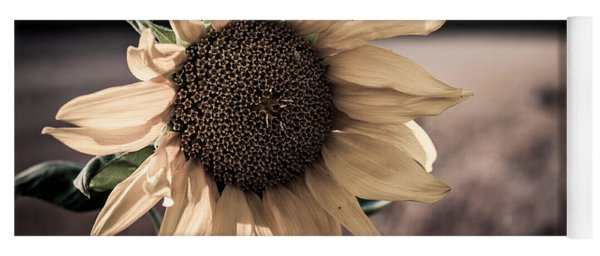 Sunflower Solitude Yoga Mat