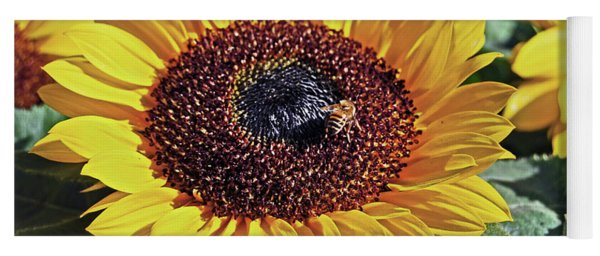 Sunflowers And Honeybee Yoga Mat