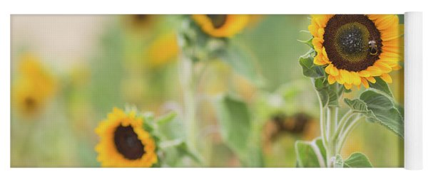 Sunflowers Delight Yoga Mat