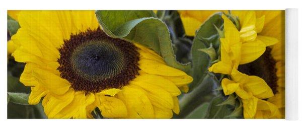 Sunflowers Helianthus Annus Yoga Mat