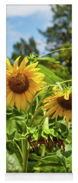 Sunflowers In Sunshine Yoga Mat