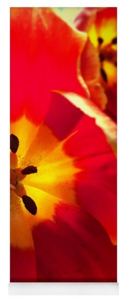 Sunkissed Tulips Yoga Mat