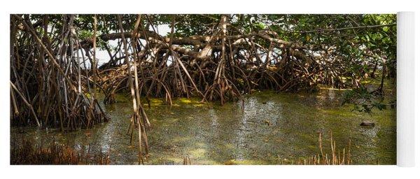 Sunlight In Mangrove Forest Yoga Mat