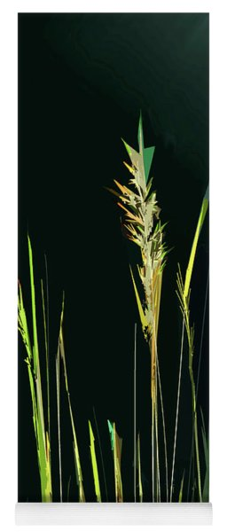 Sunlit Grasses Yoga Mat