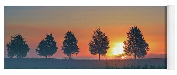 Yoga Mat featuring the photograph Sunrise Behind The Cedars by Lori Coleman