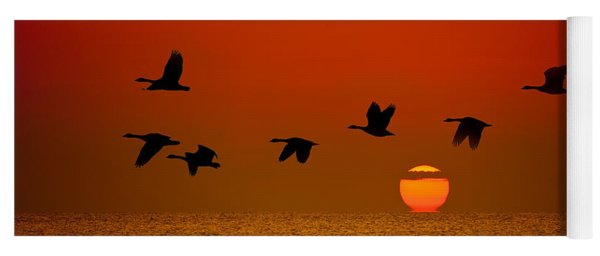 Sunrise Flight Yoga Mat