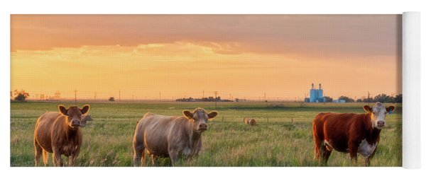 Sunset Cattle Yoga Mat