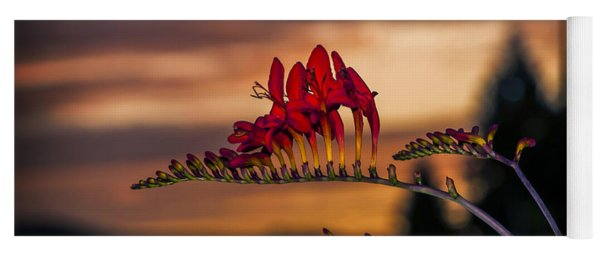 Sunset Crocosmia Yoga Mat