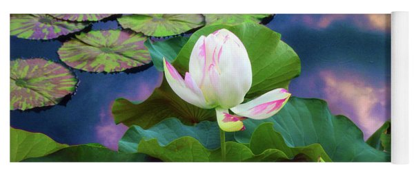 Yoga Mat featuring the photograph Sunset Pond Lotus by Jessica Jenney