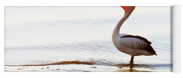 Sunshine Coast Pelican Yoga Mat