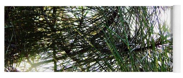 Sunshine Through Pine Needles Yoga Mat