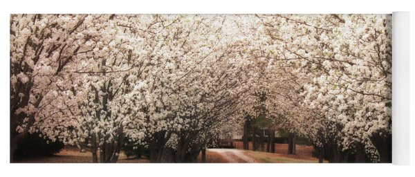 Dreamy Dogwood Trees South Carolina - Spring Blossom Trees South Carolina Yoga Mat