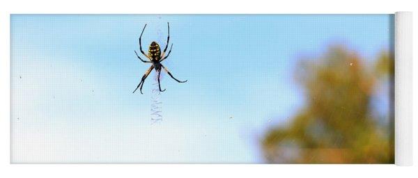 Suspended Spider Yoga Mat