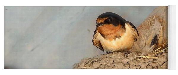 Swallow On Nest Yoga Mat