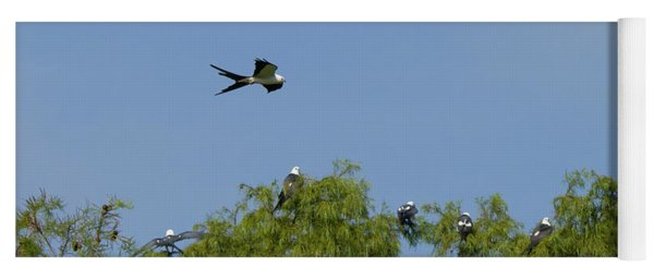 Swallow-tailed Kite Flyover Yoga Mat