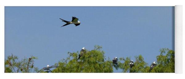 Swallow-tailed Kite Flyover Yoga Mat
