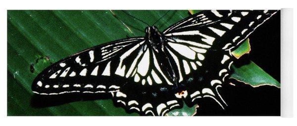 Swallowtail Butterfly- Close Yoga Mat