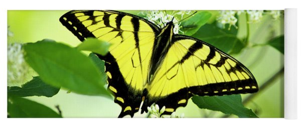 Swallowtail Butterfly Feeding On Flowers Yoga Mat