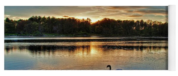 Swan At Sunset Yoga Mat