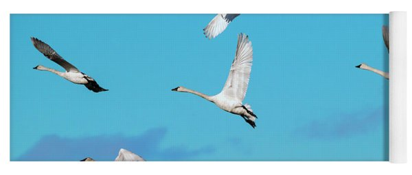 Swan Flight Yoga Mat