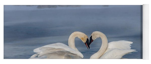 Yoga Mat featuring the photograph Swan Valentine - Blue by Patti Deters