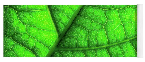 Sweet Green Leaf Yoga Mat
