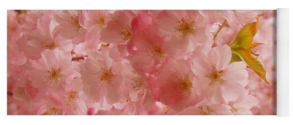 Sweet Pink- Holmdel Park Yoga Mat