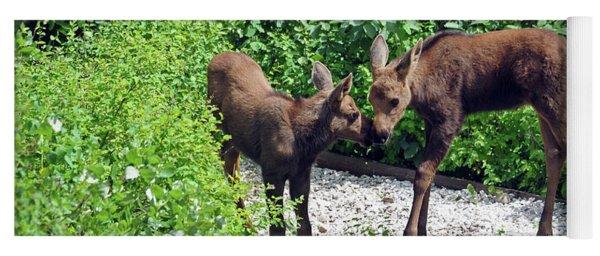 Sweet Twin Moose Calves Yoga Mat