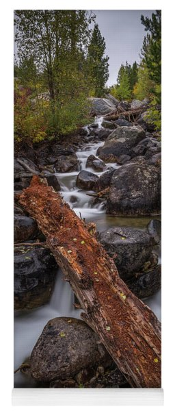 Taggert Creek Waterfall Log Yoga Mat