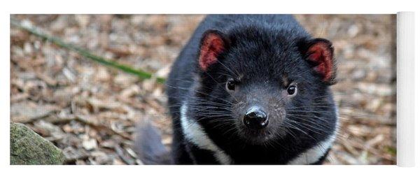Tasmanian Devil Yoga Mat